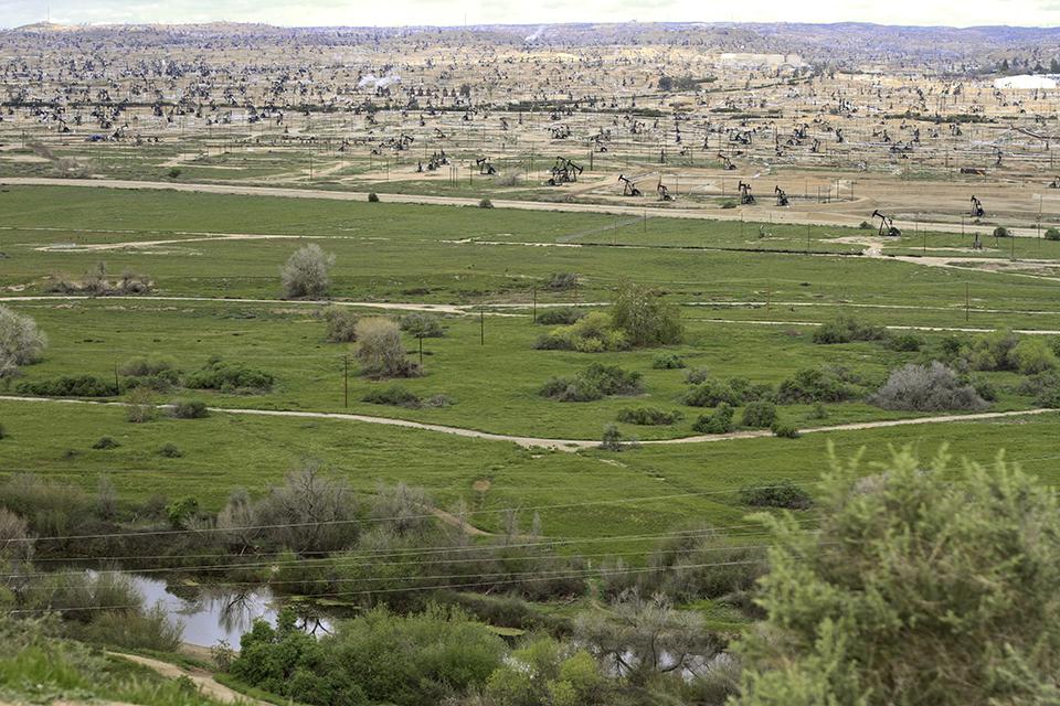 Pumpjacks arrayed across the landscape of the Kern River Oil Field (Photo by Neeraj Bhatia)