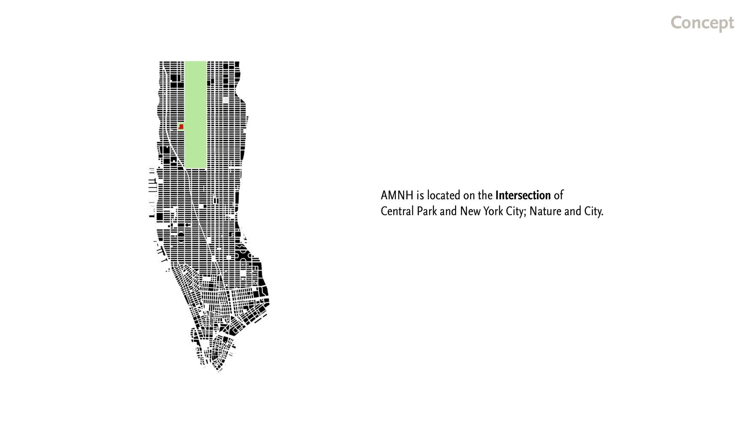 190519 AMNH Final Presentation_Page_06.jpg
