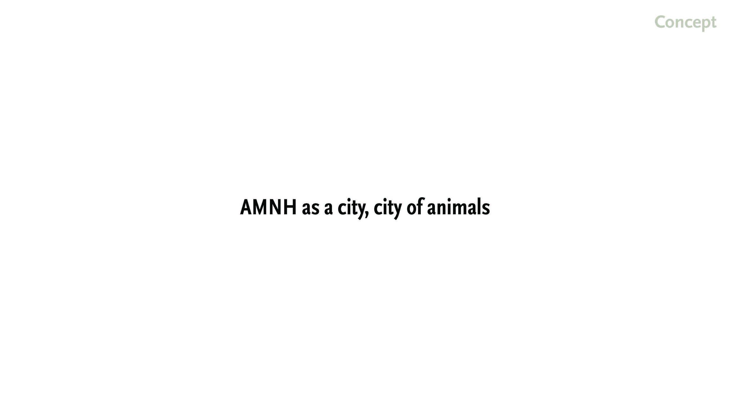 190519 AMNH Final Presentation_Page_08.jpg