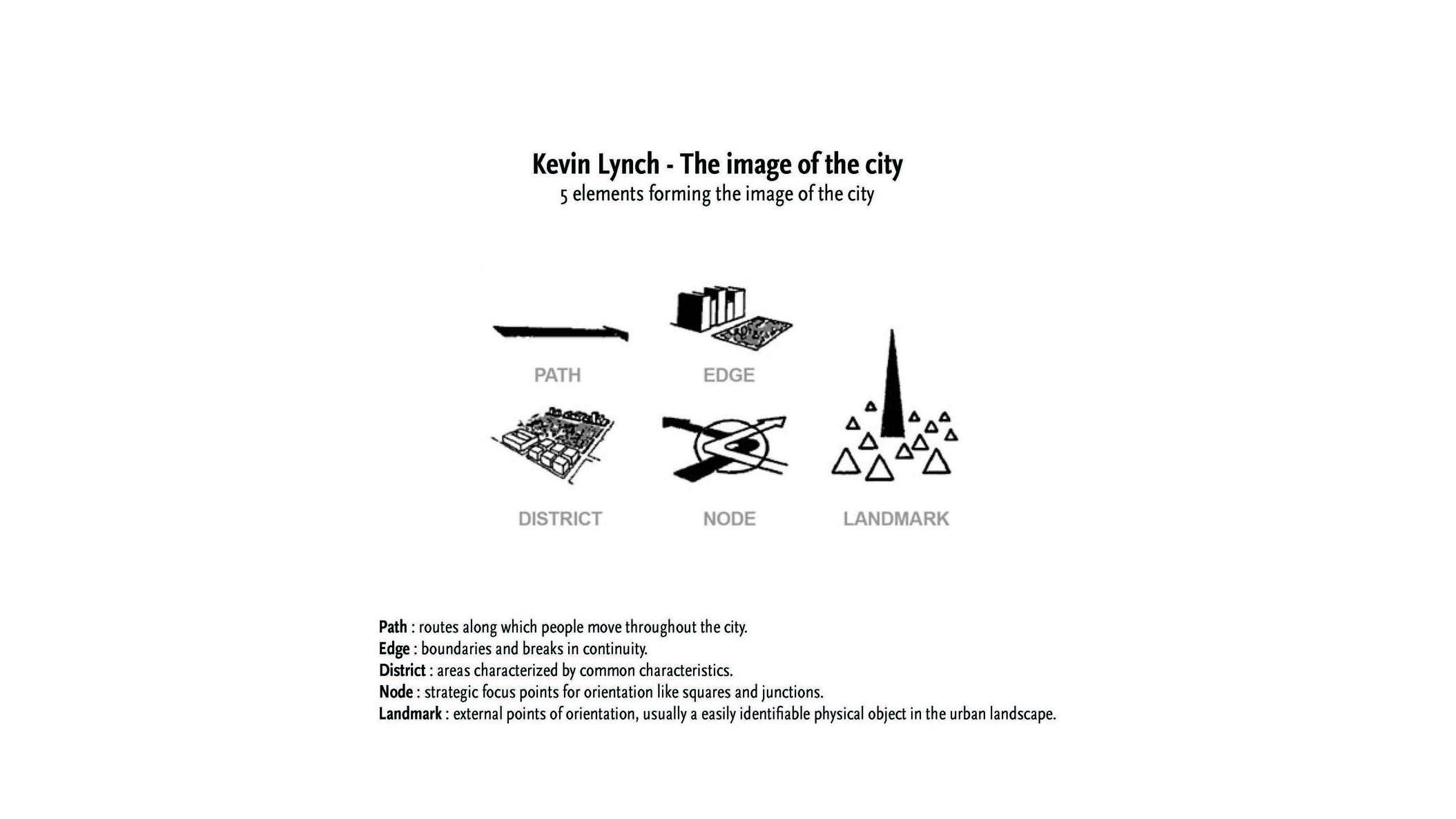 190519 AMNH Final Presentation_Page_09.jpg
