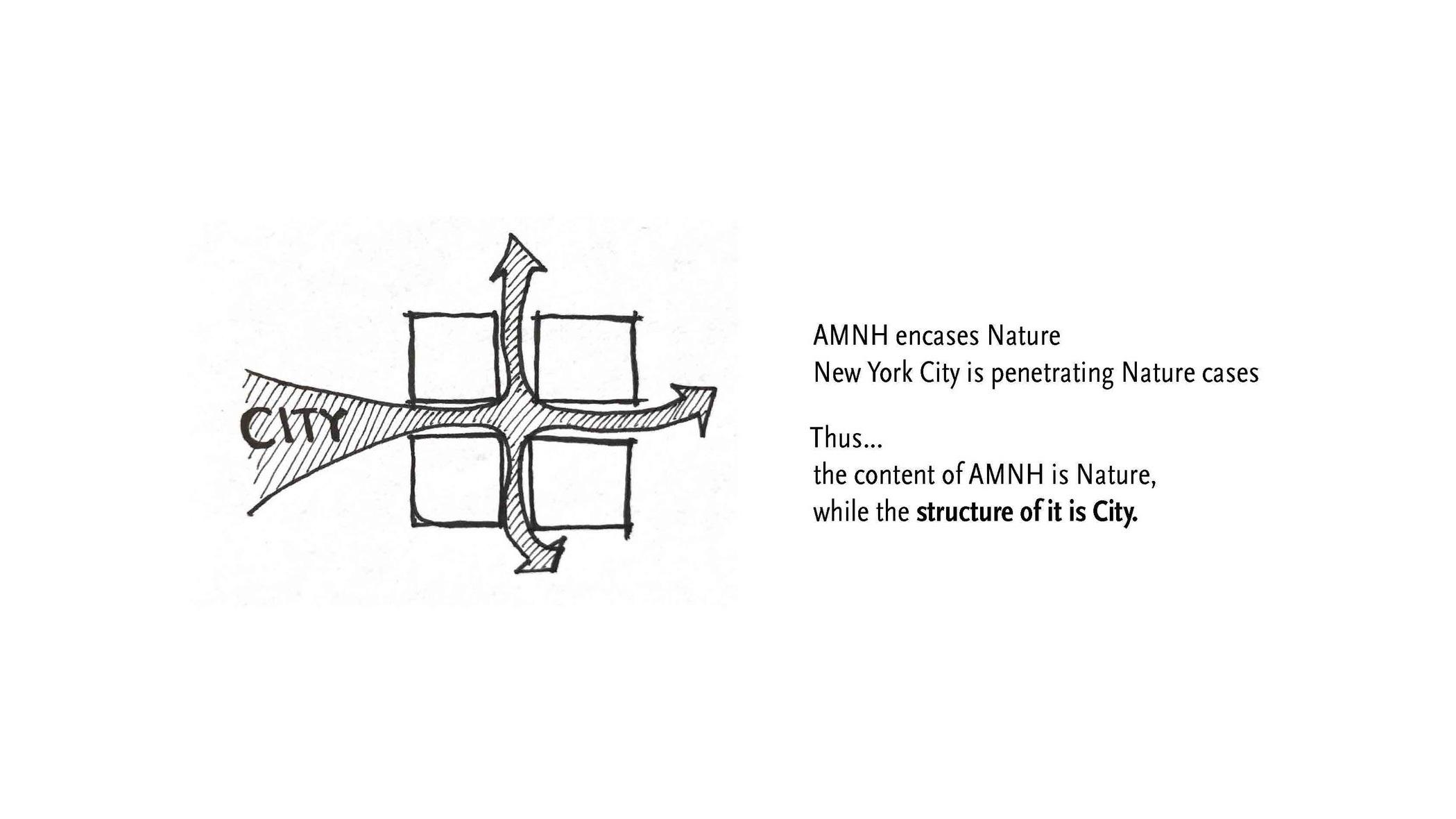 190519 AMNH Final Presentation_Page_07.jpg