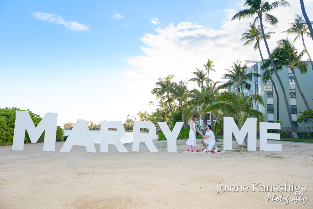 Mary Me Sign Project(DIY) - World's largest Marry Me sign