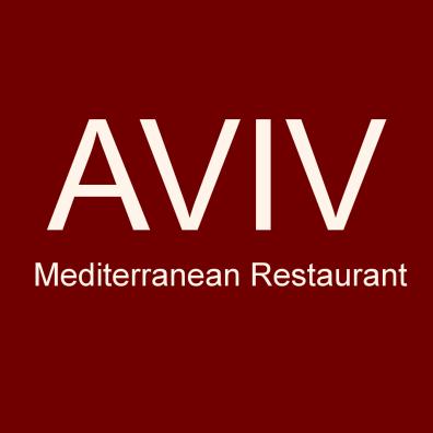aviv_logo.png