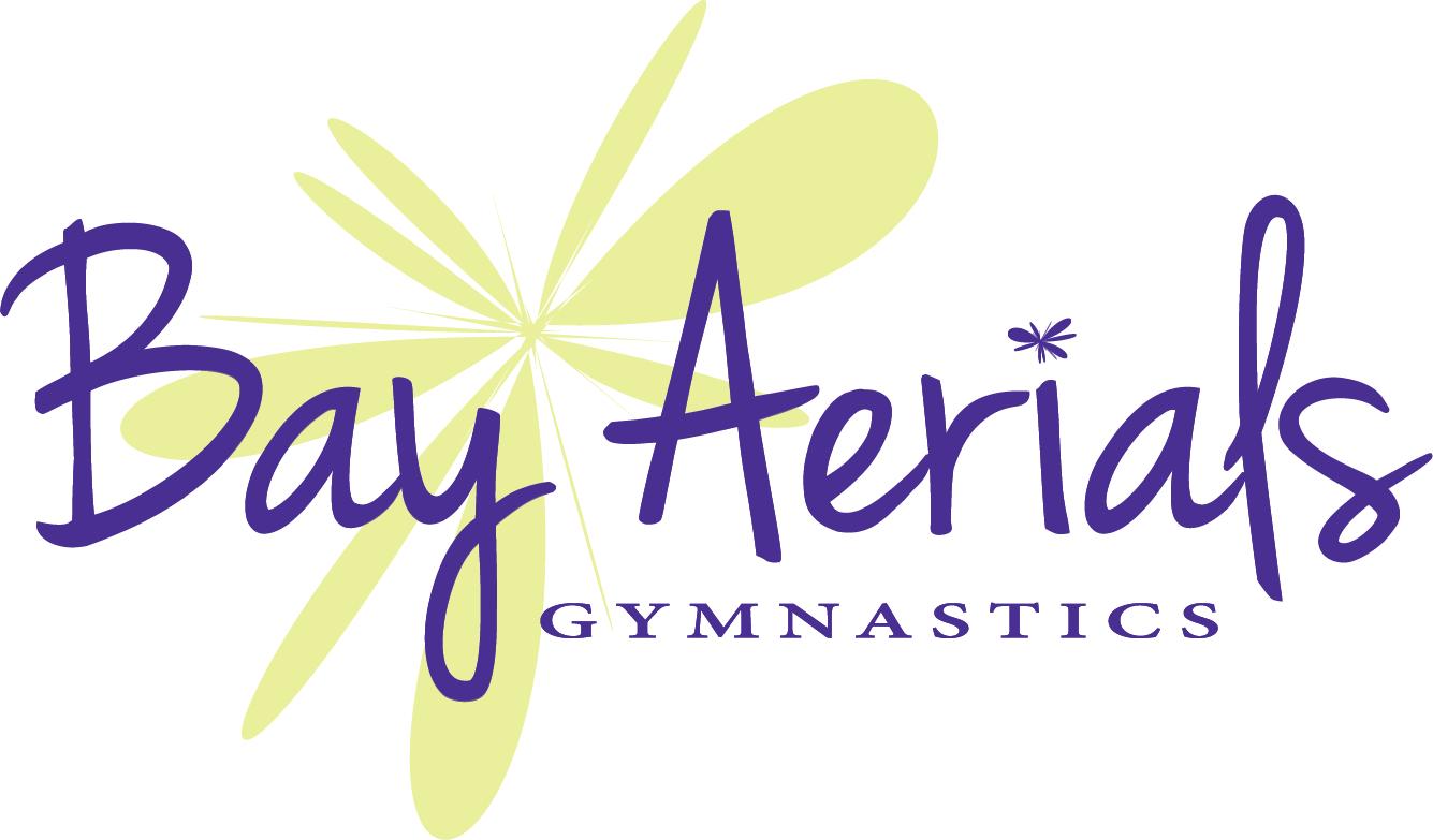 Bay Aerials Logo