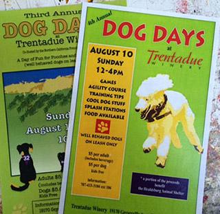 sq-sp-dog-days-title.jpg