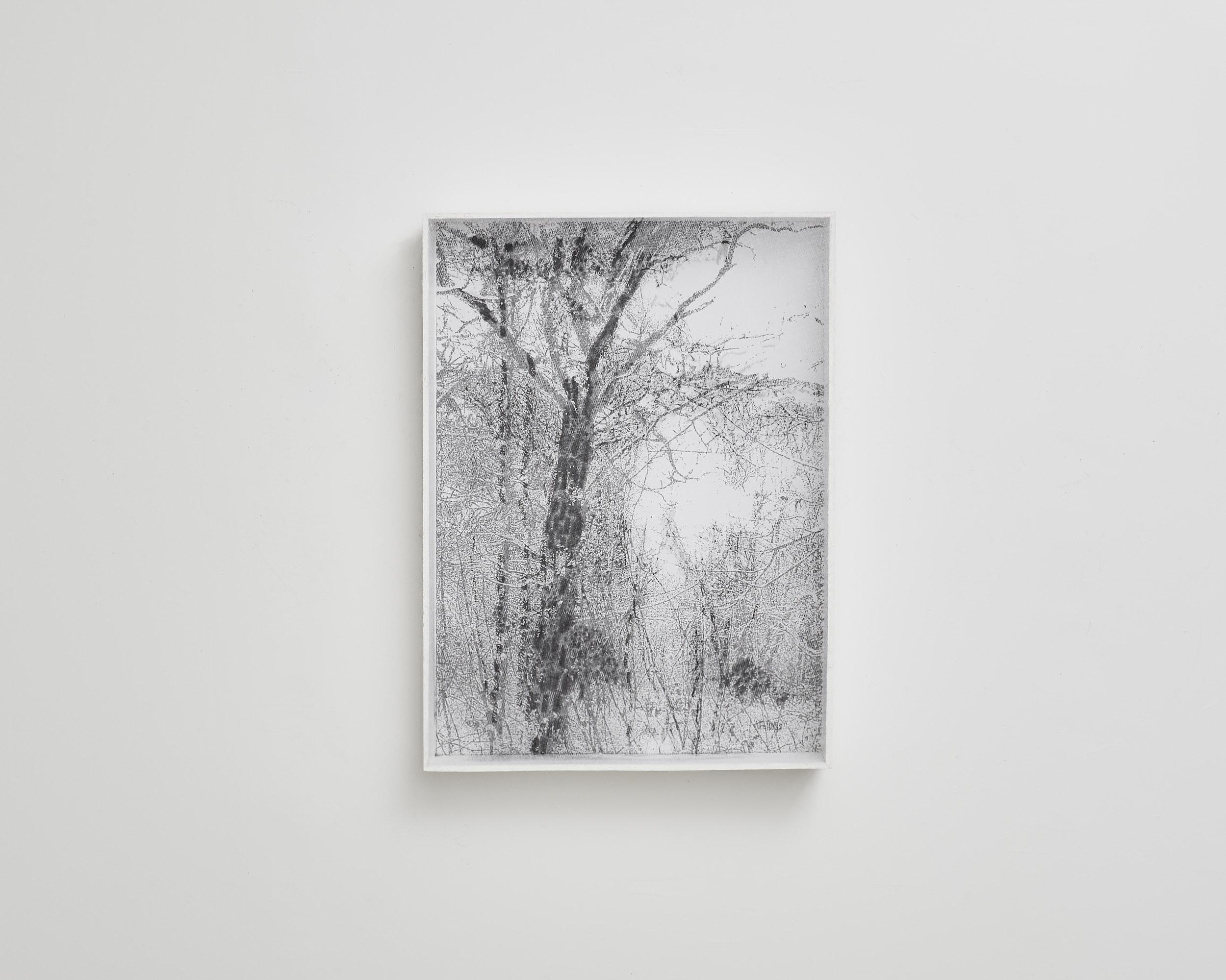 Dessin-écran 6  2010, Paysage, photocopie, trame, crayon graphite et boîte bois 62x84cm.