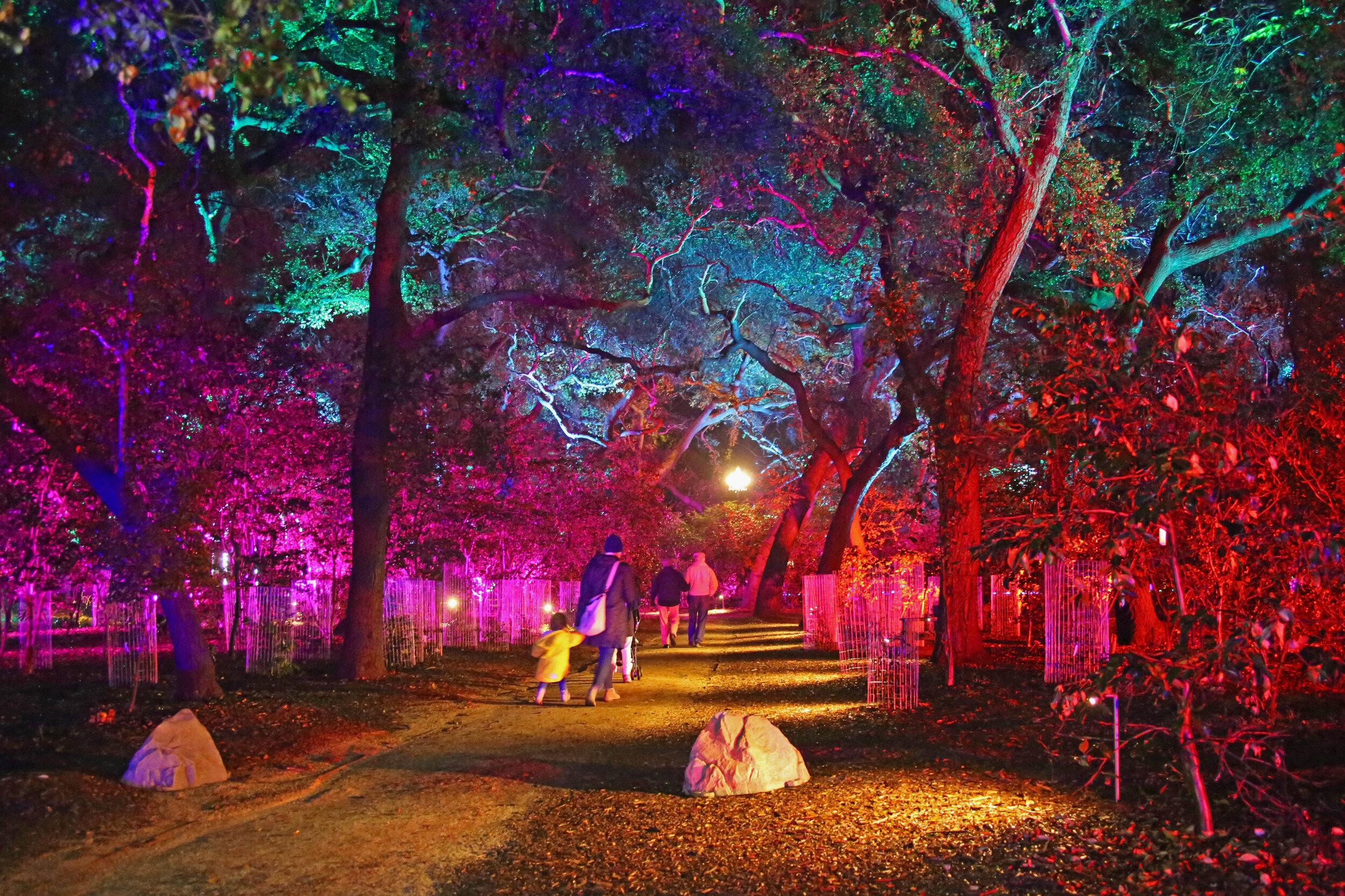 Fantasy Forest 1 © Descanso Gardens.jpg