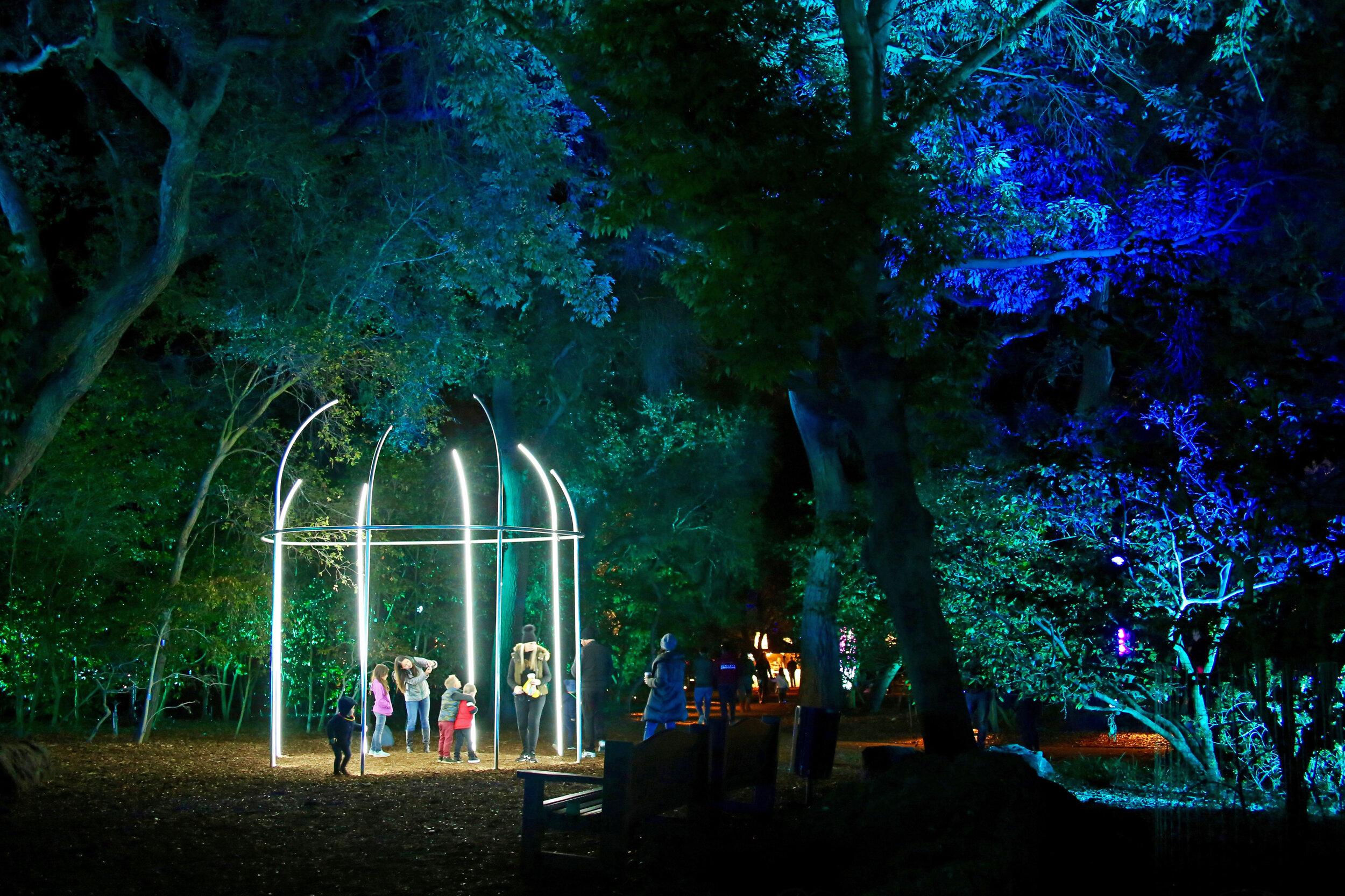 Fantasy Forest 2 © Descanso Gardens.jpg