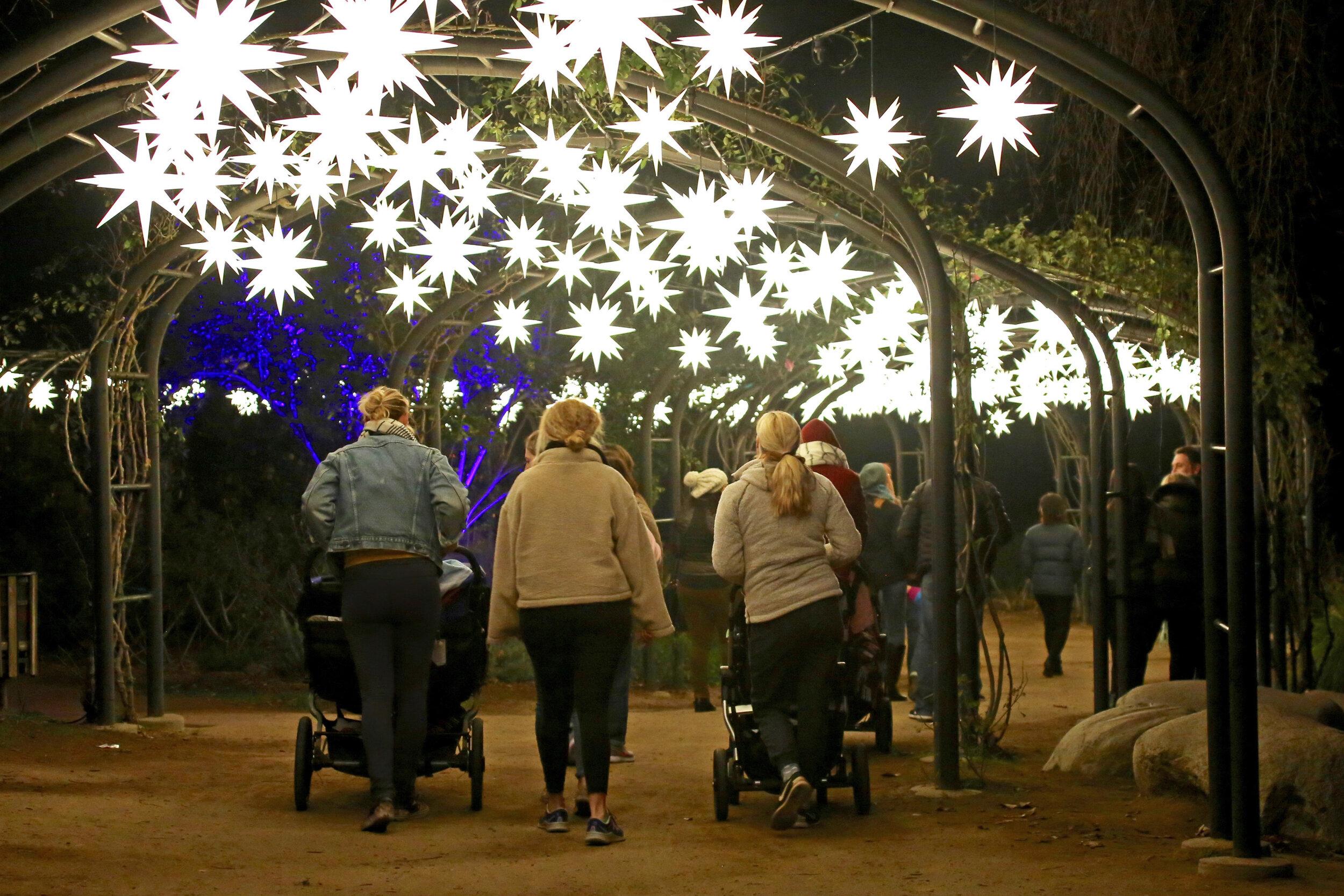 Starlight Garden © Descanso Gardens.jpg