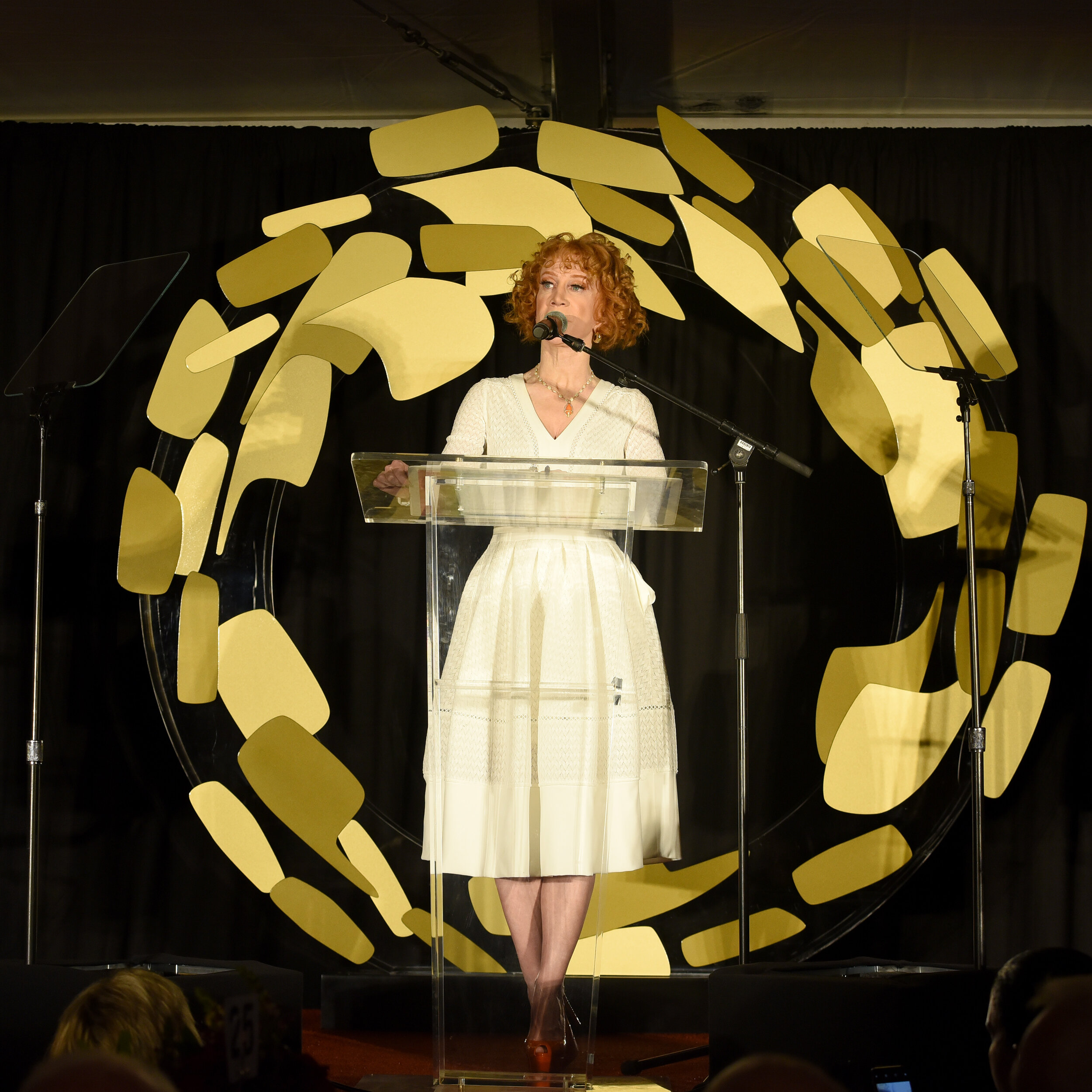Kathy Griffin  (Photo by Presley Ann_Getty Images).jpg