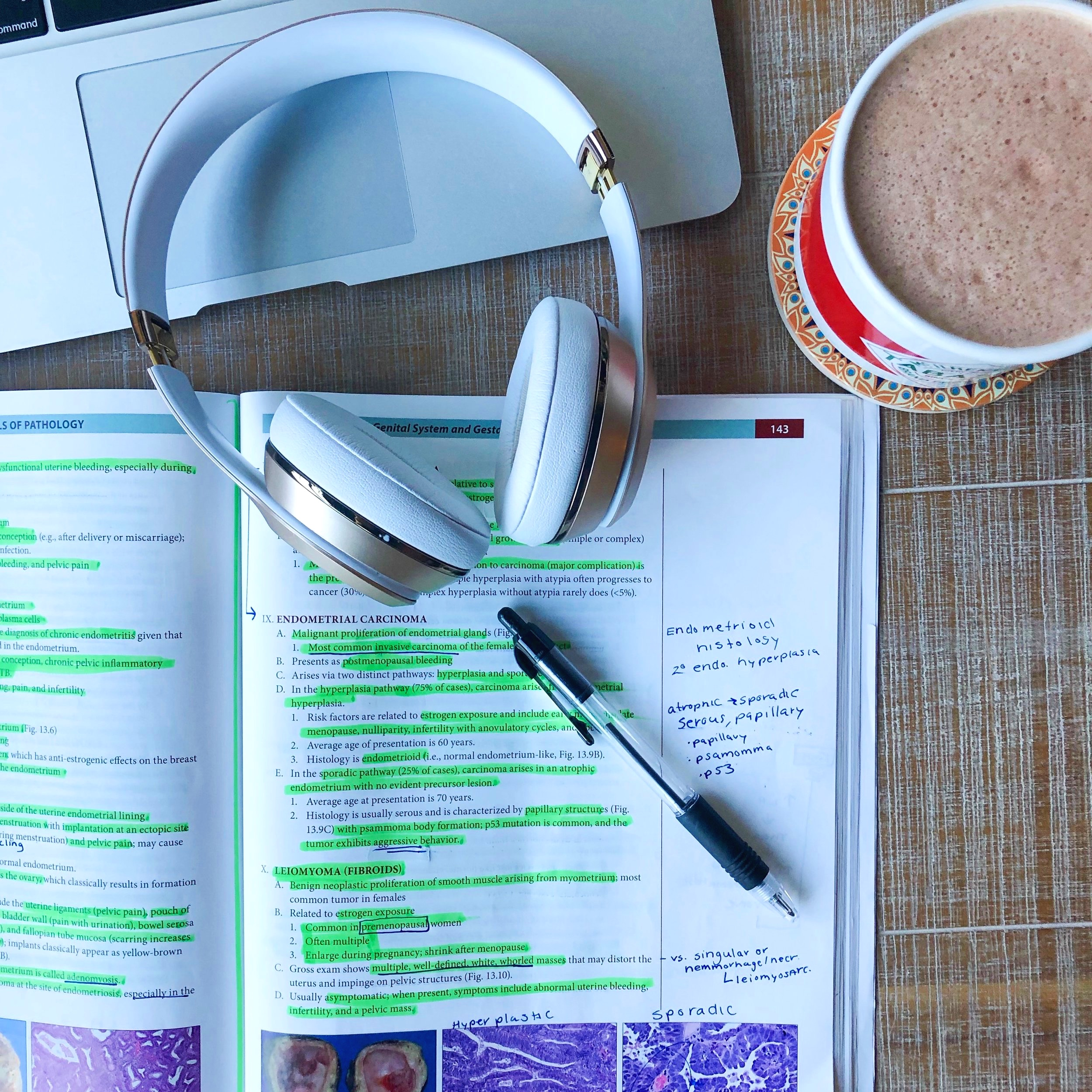 Developing Successful Study Strategies in Medical School - For Students of All Ages & Levels