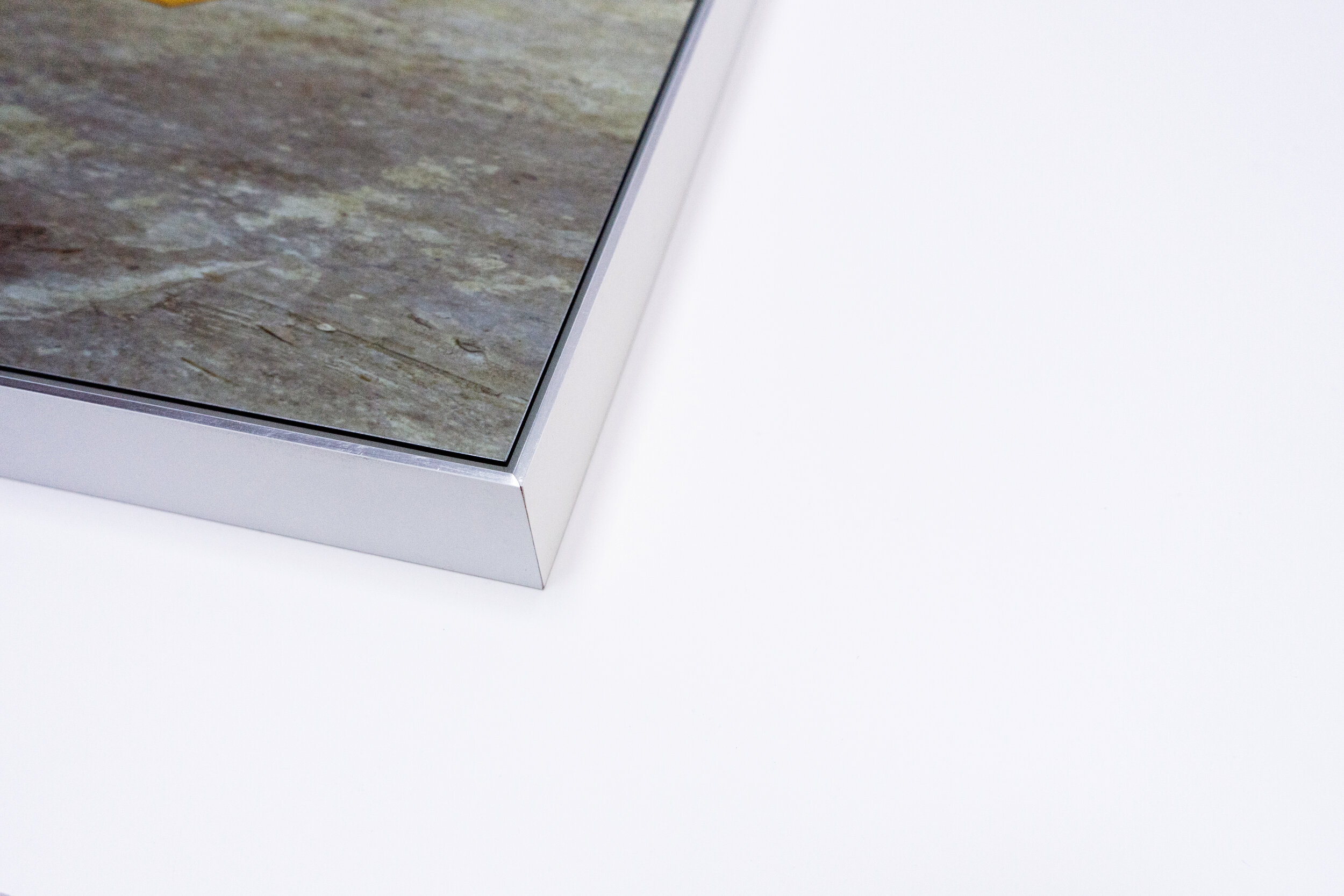 Image: A photograph mounted to an aluminum panel.