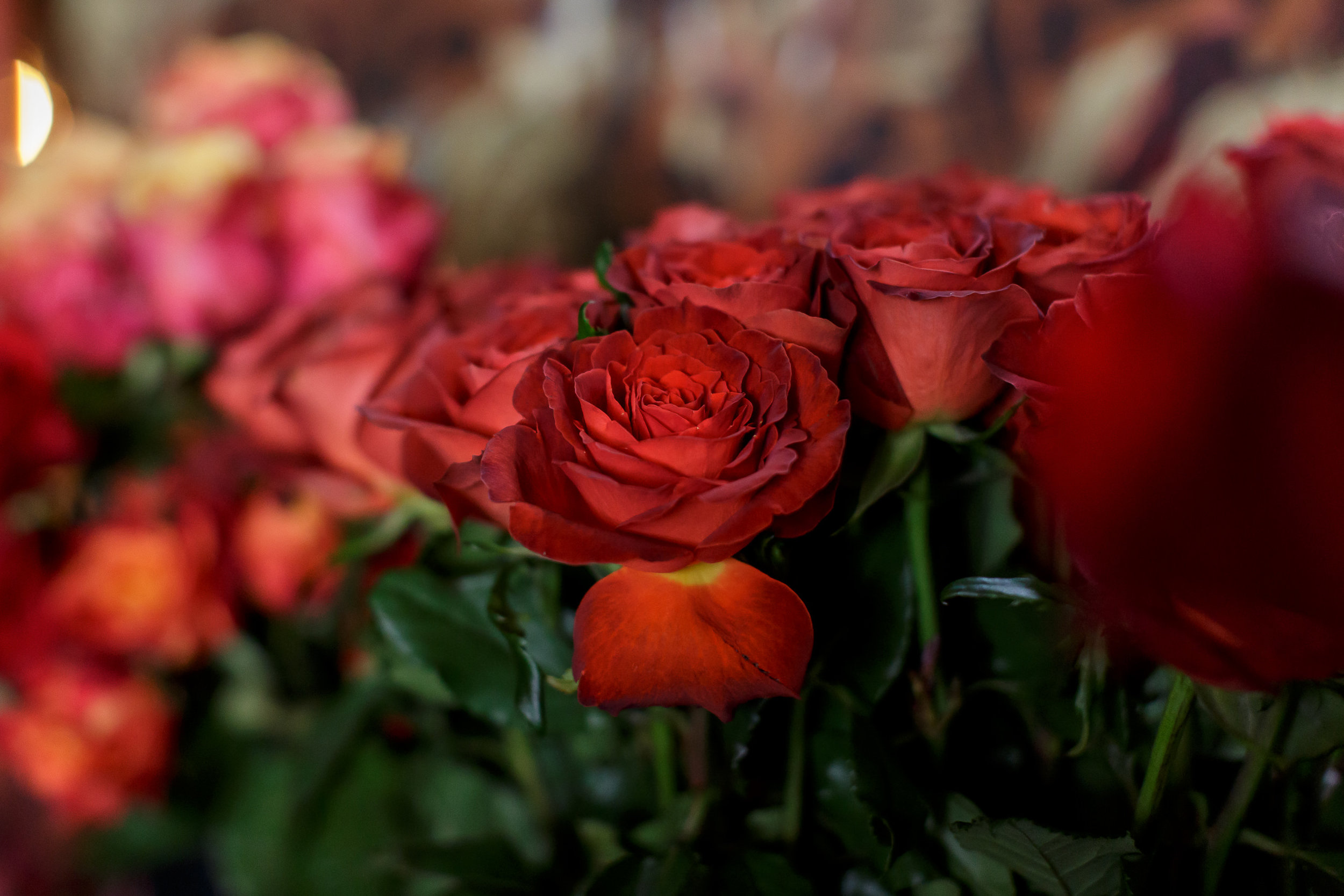 Bilen-Floral-Workshop-15.jpg