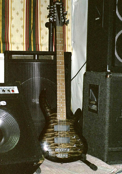 Terje Paulsen's Phil 12-string bass and rig.