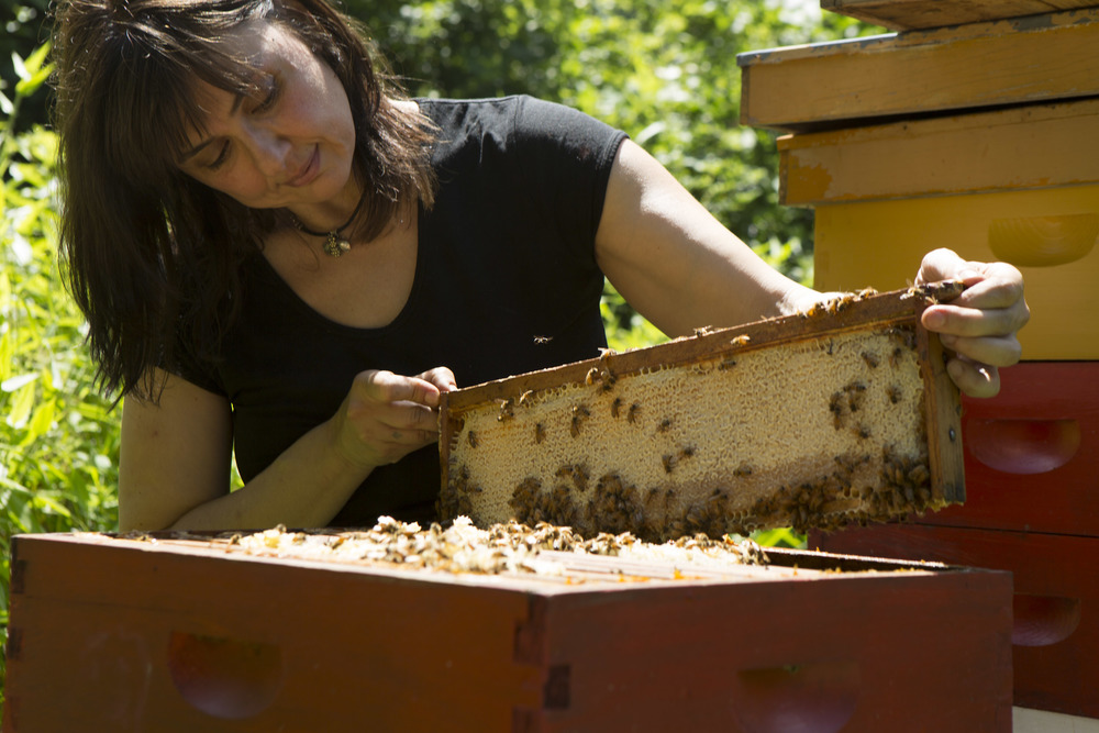 C. Marina marchese - The Co-founder of the American Honey Tasting Society, Owner of Red Bee Honey, and the Only Certified Honey Sommelier in the United States