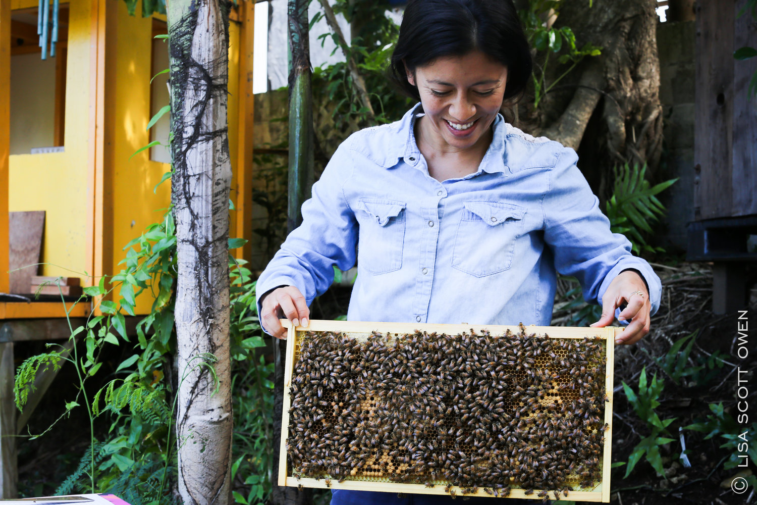 Jasmine Joy - Founder of Beelieve Hawai'i and Co-founder of Hawai'i Bee Collective