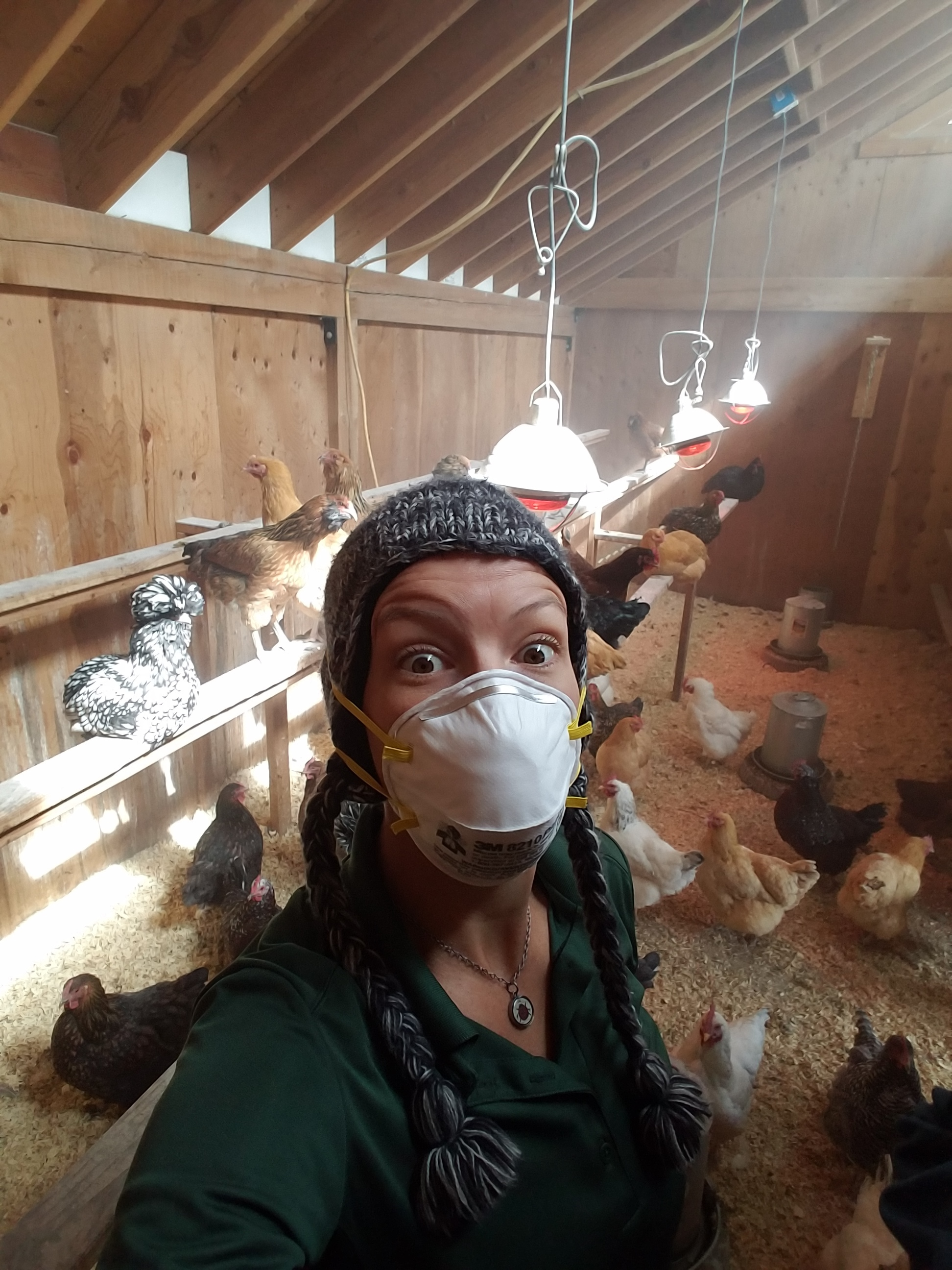 Cleaning out a chicken coop in Colorado