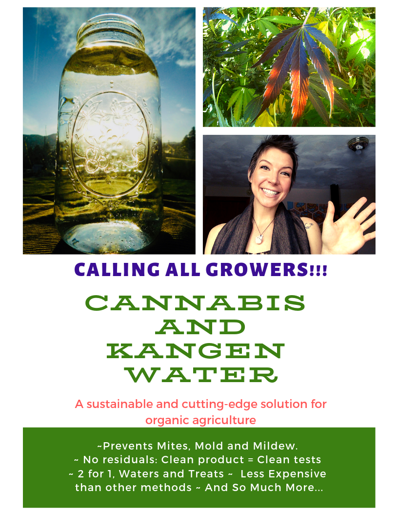 Grow the best cannabis in colorado.png