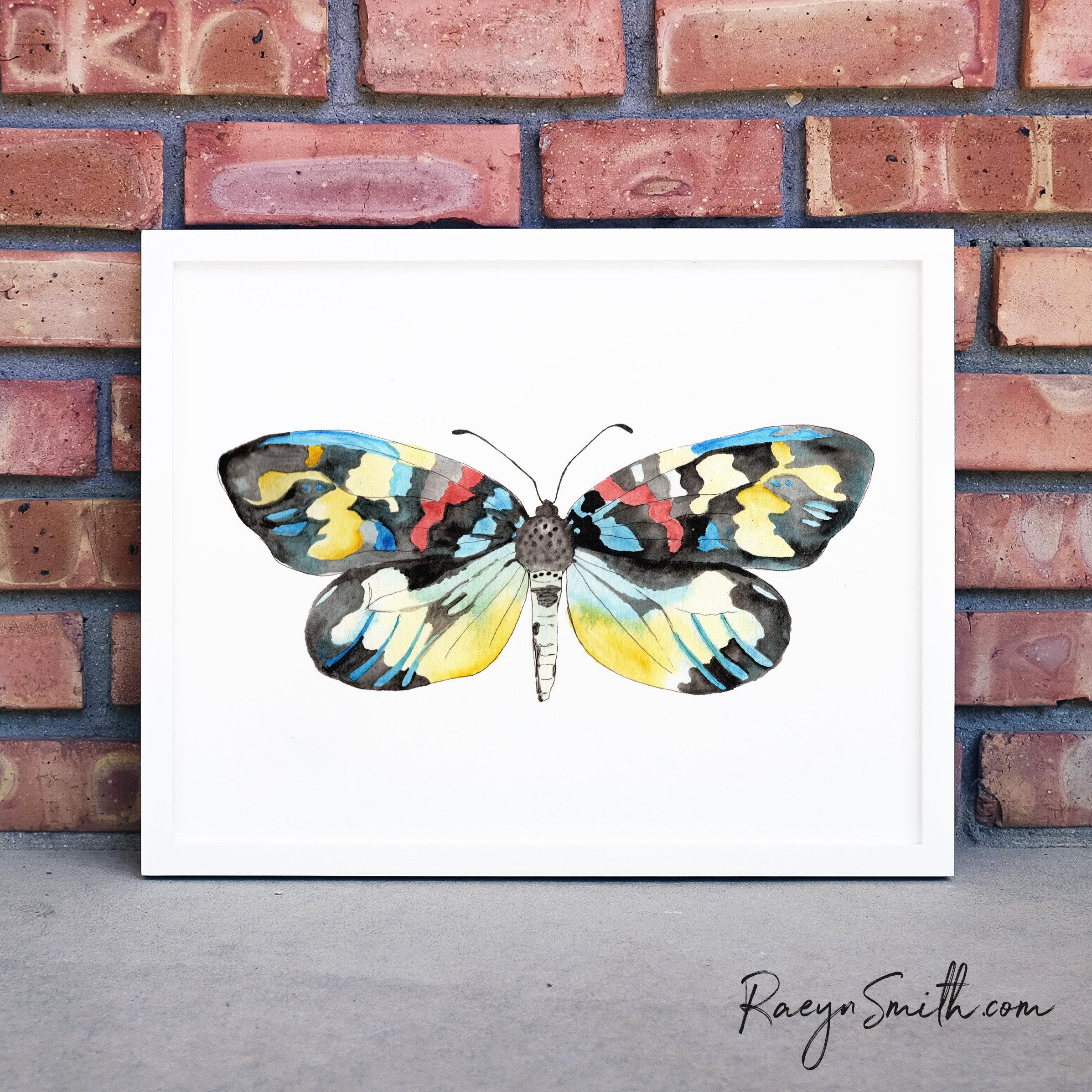 Erasmia Pulchera Chinesis - Moth - Painted by Raeyn Smith. Visit RAEYNSMITH.COM
