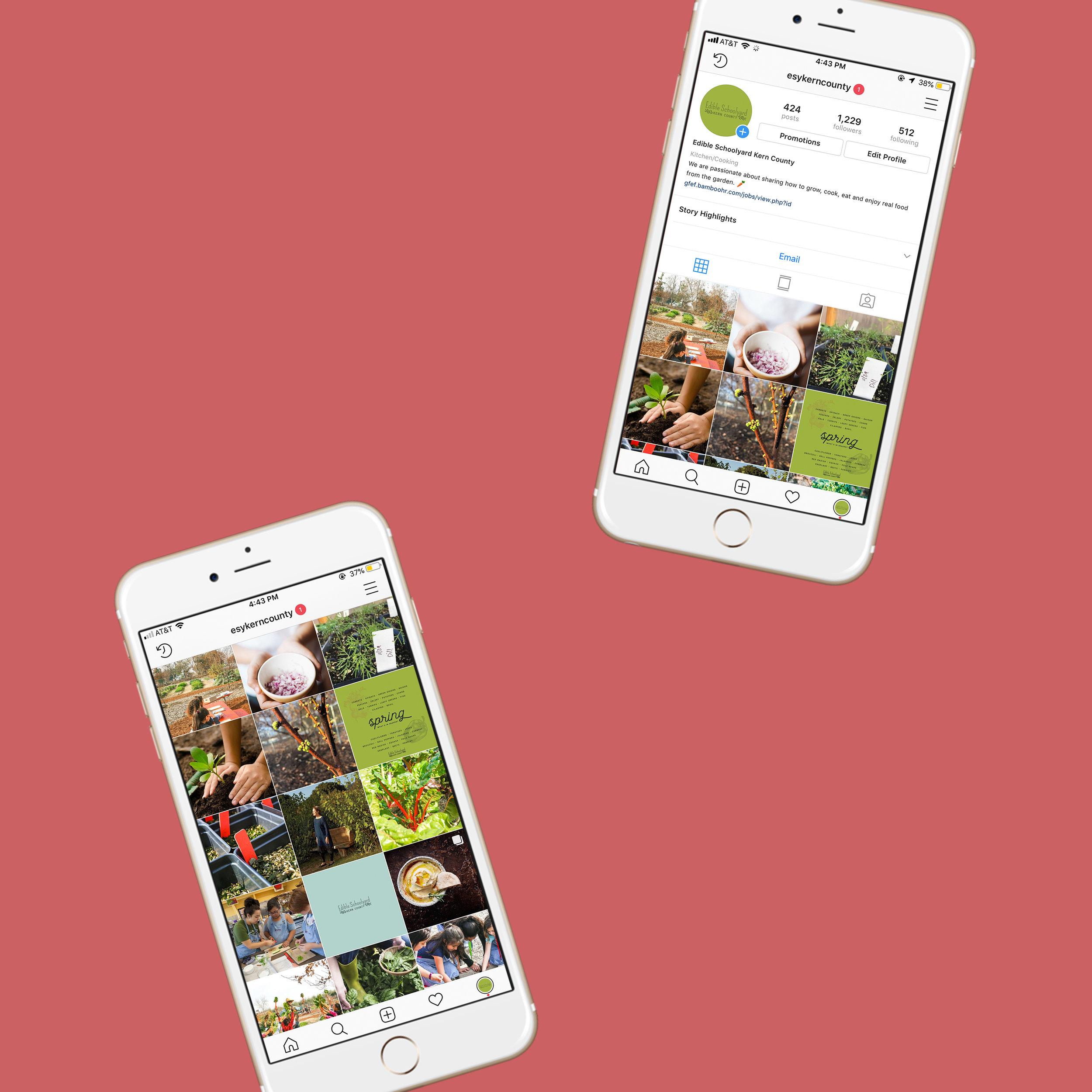 Edible-Schoolyard-Kern-County-Promotion_Website_1.jpg