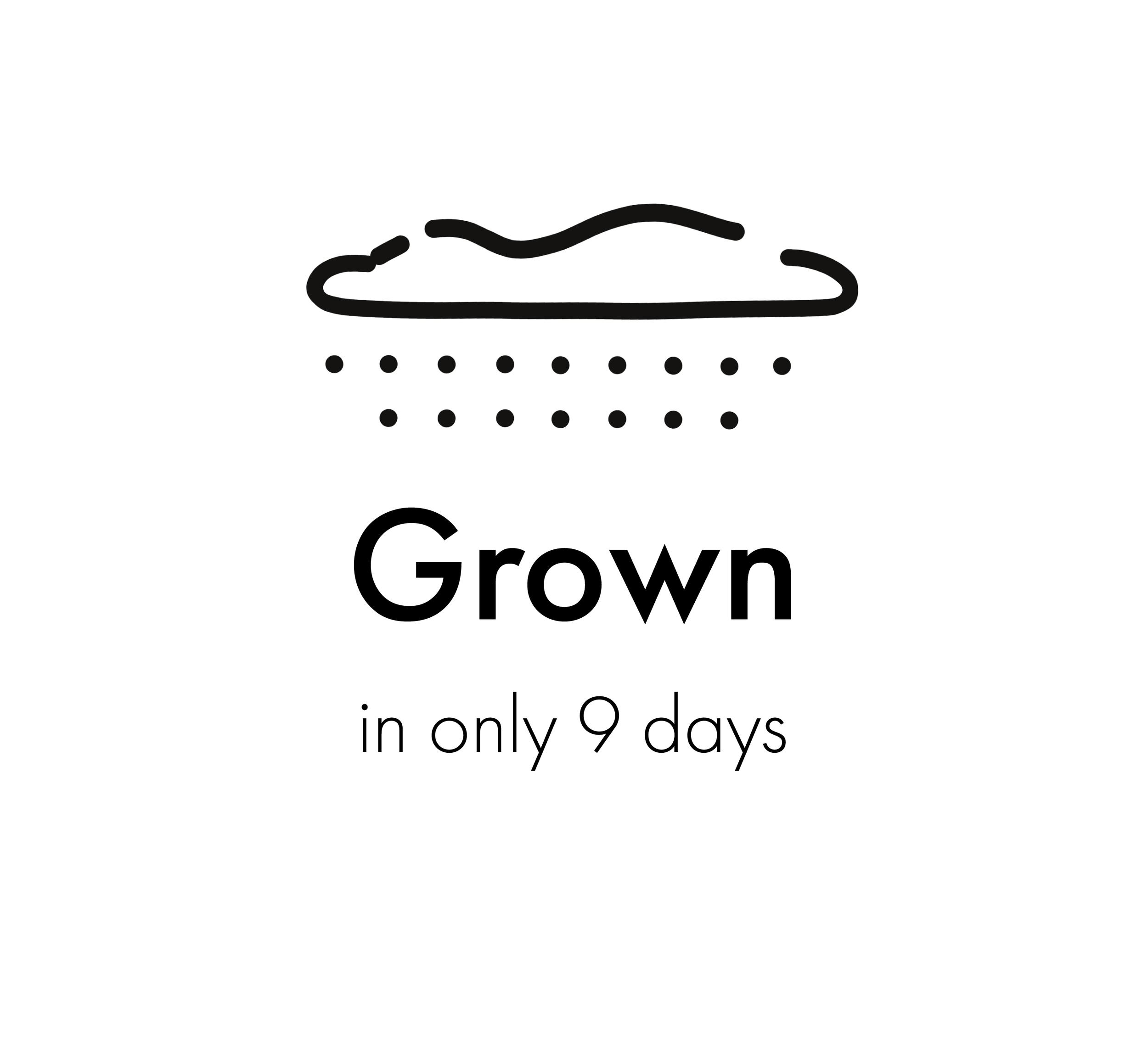 grown.png