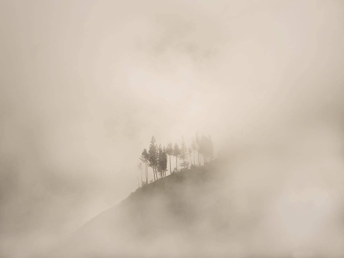Mystical highlands of Ecuador