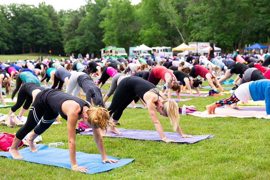 nys-yoga-fest-downdog-2018.jpg