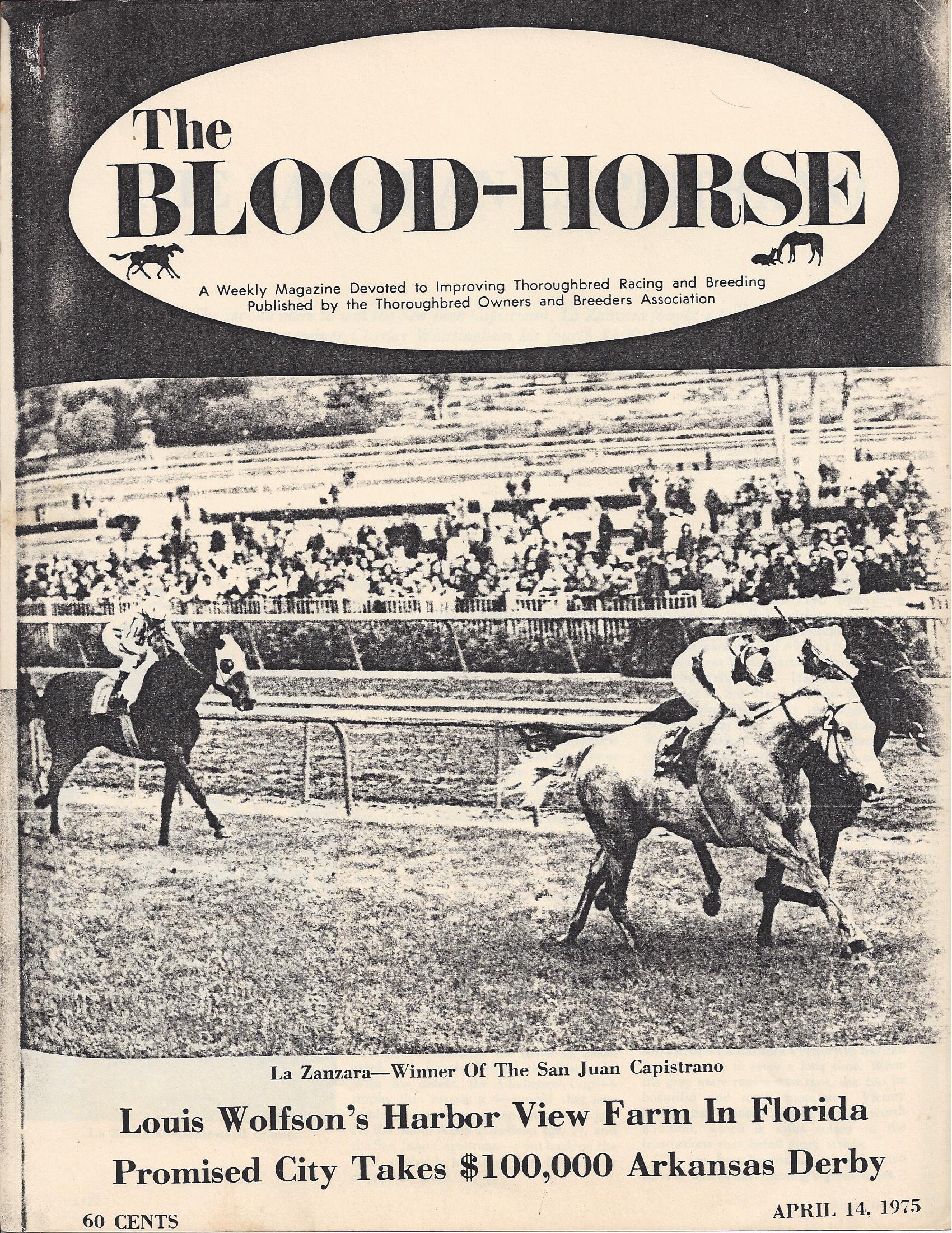 Blood Horse 1975-1.jpg
