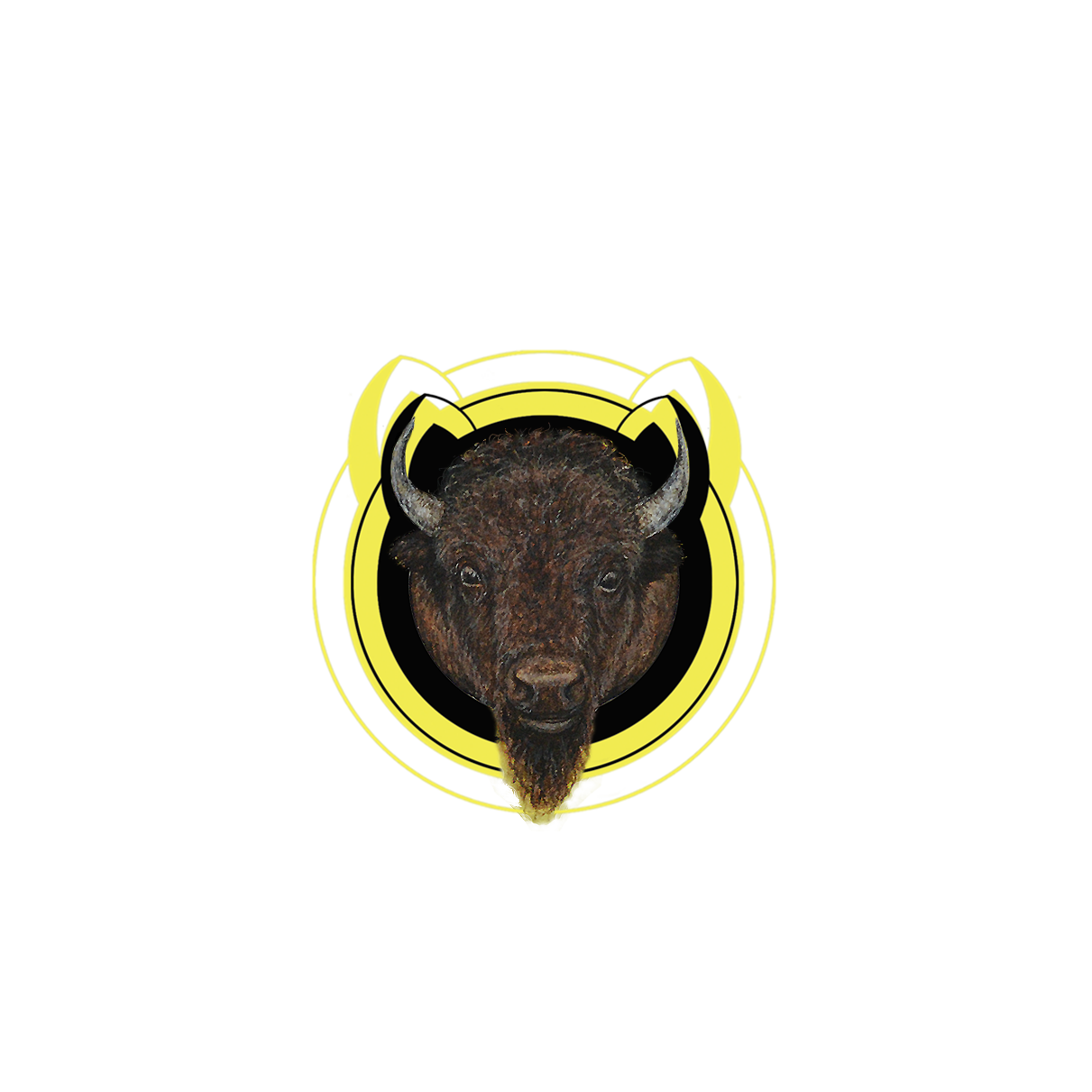 """""""WHOP"""" - the bison"""