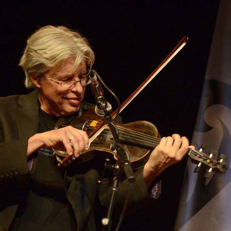 Fiddle Intensive with Darol Anger