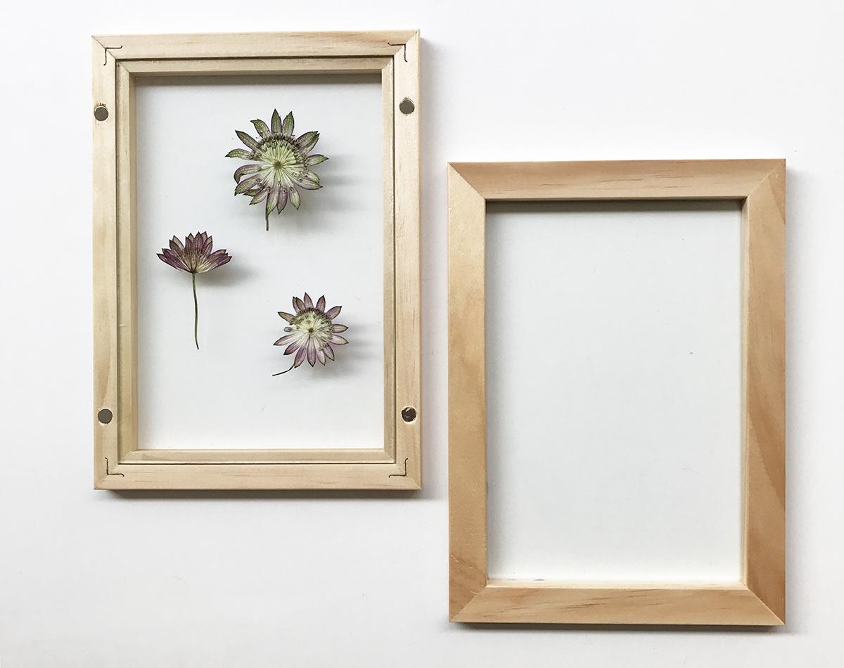 herbier-tendance-diy-vegetal-2.jpg