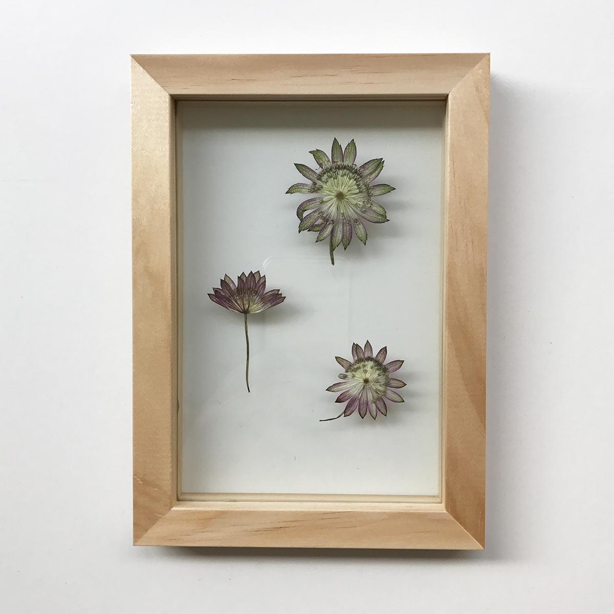 herbier-tendance-diy-vegetal-3.jpg