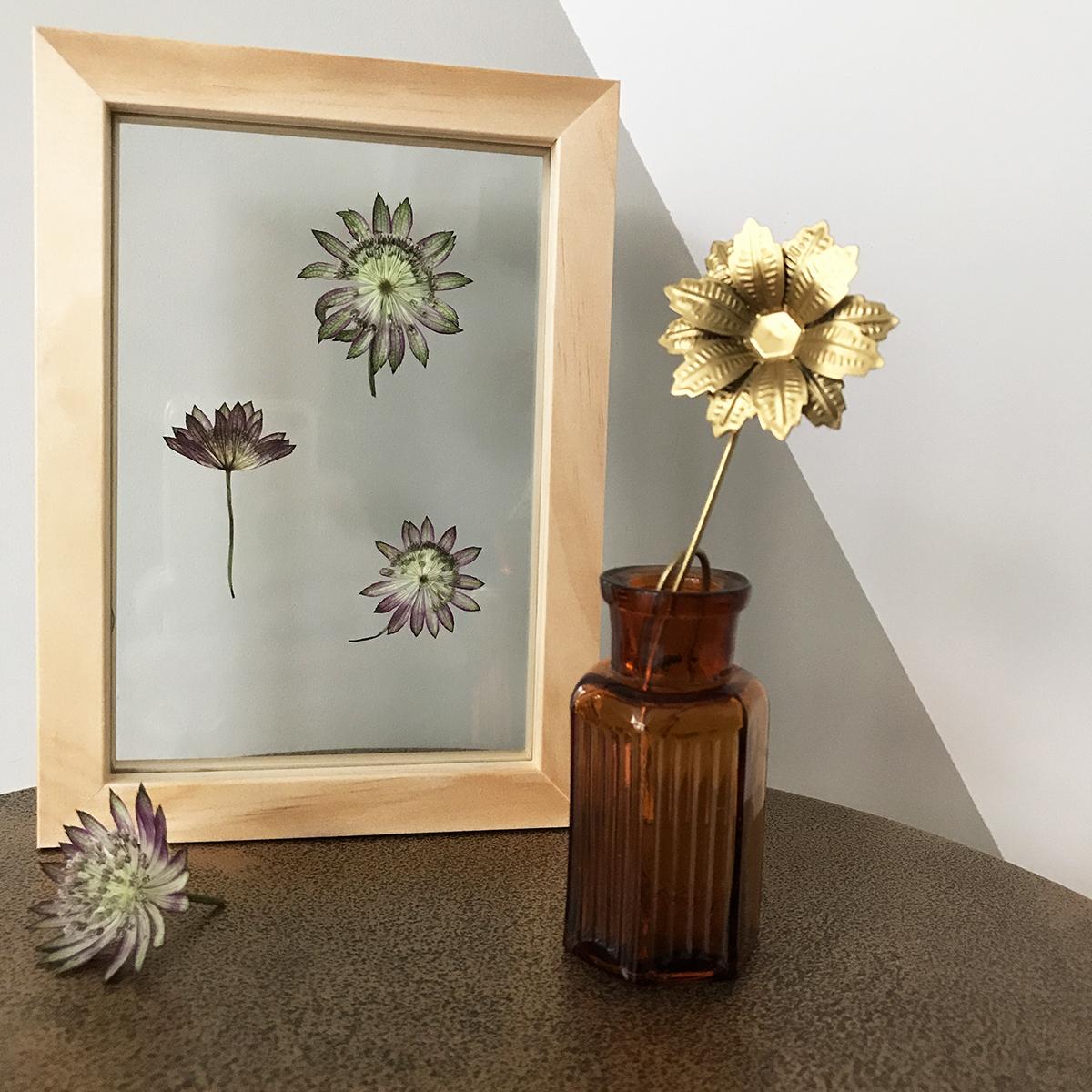 herbier-tendance-diy-vegetal-4.jpg