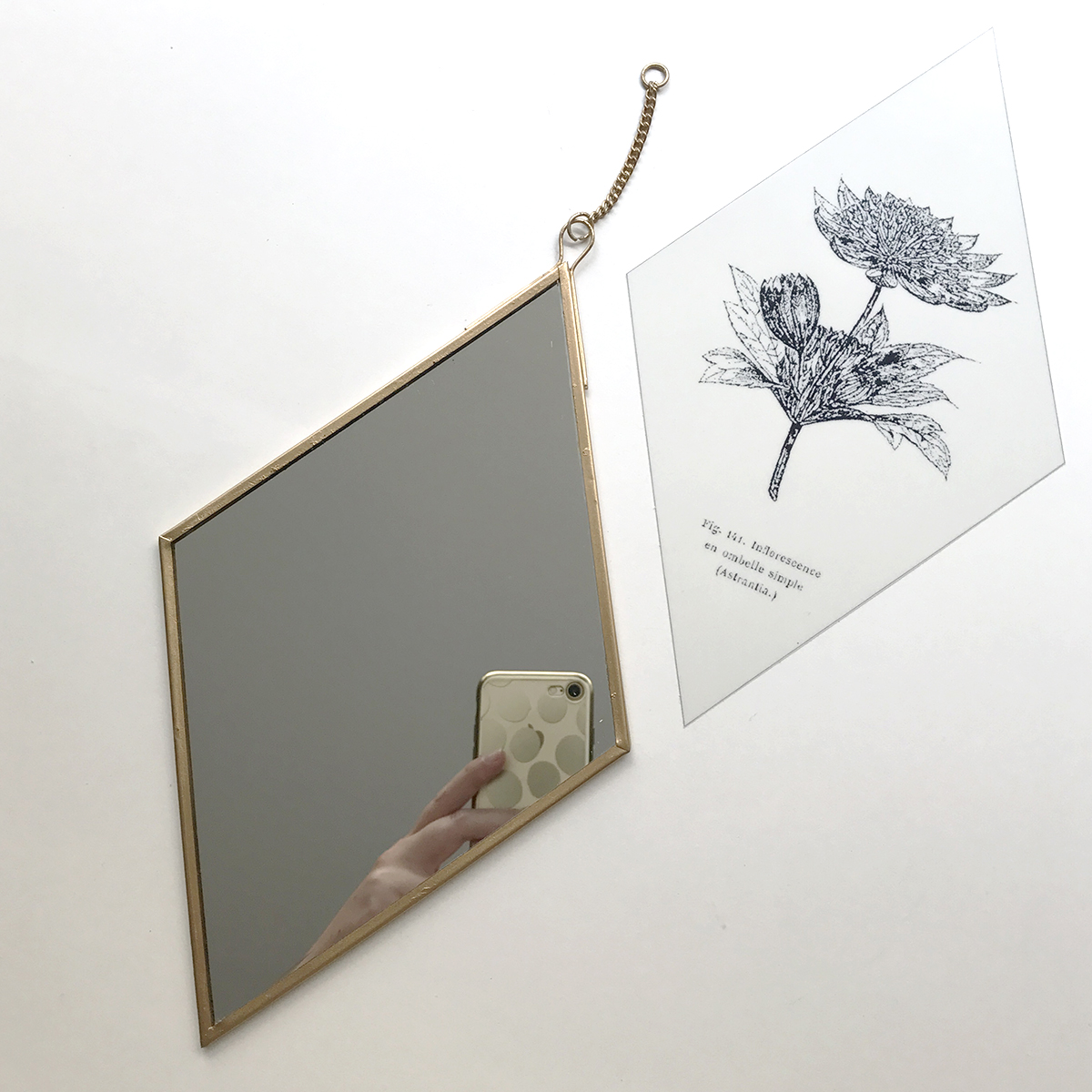 herbier-tendance-diy-gravure-miroir-1.jpg