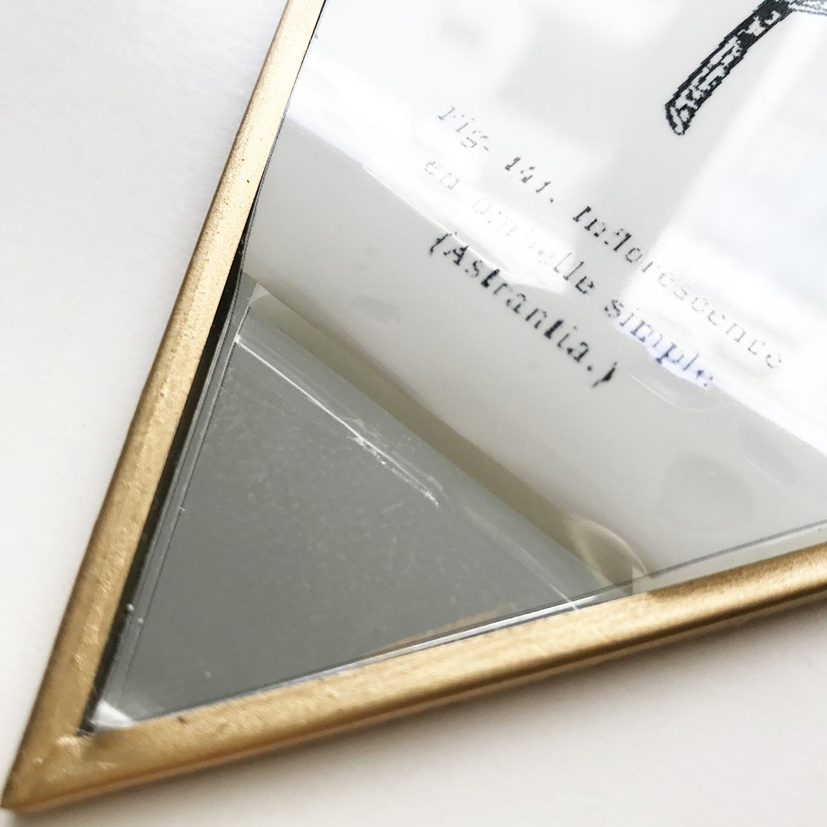 herbier-tendance-diy-gravure-miroir-2.jpg