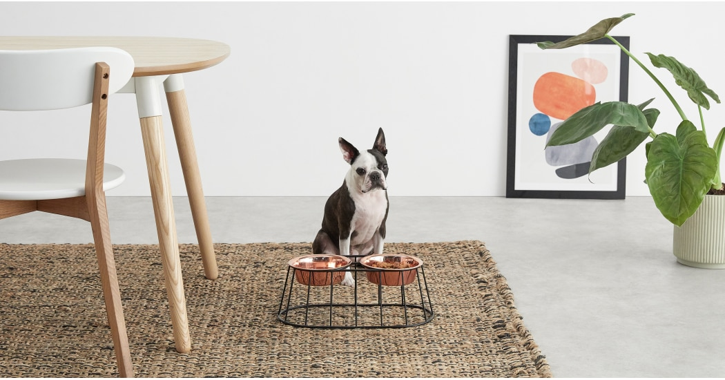 mobilier-animaux-chat-chien-pet-design-4