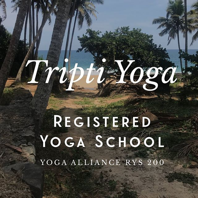 Our next phase has begun. Thank you to everyone who has supported us and helped manifest our school registration. Founded in yoga philosophy and the entanglement of Vedanta, Samkhya and Yoga darshan.  #yogaphilosophy #yogaschool #yogaindia #yogateaching #yogatraining #kereala #india #ukyoga #yoga #yogaalliance #yogaallianceprofessionals #yogalife #sadhana @sarah.sfsr @evelyncribbin @zibabayley