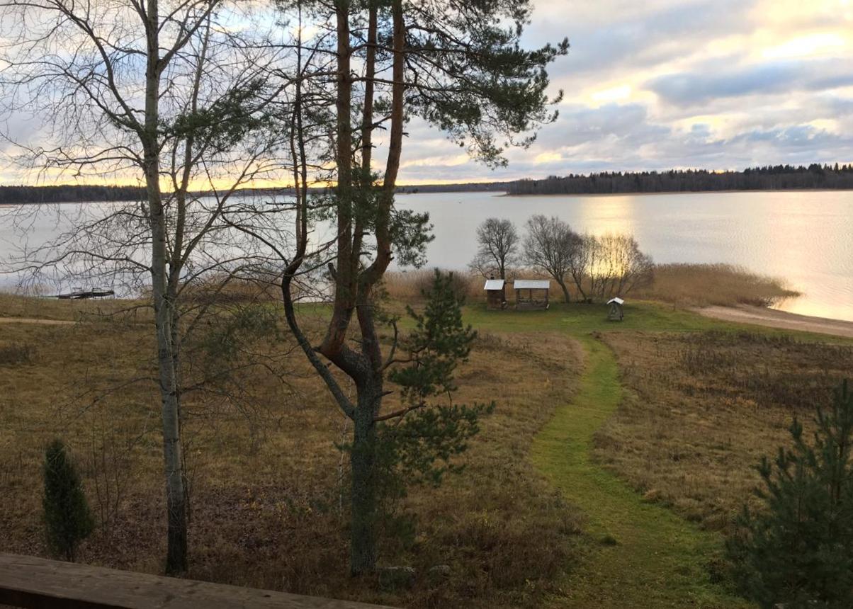 осенний-пейзаж-с-сосной-и-видом-на-озеро-в-загородном-отеле-ландшафт.jpg