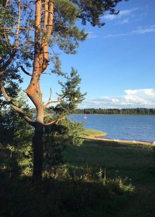 летний-вид-на-озеро-с-пляжа-загородного-отеля.jpg