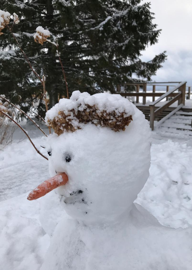 лучший-снеговик- слепленный-детьми-в-загородном-отеле-на-озере.jpg