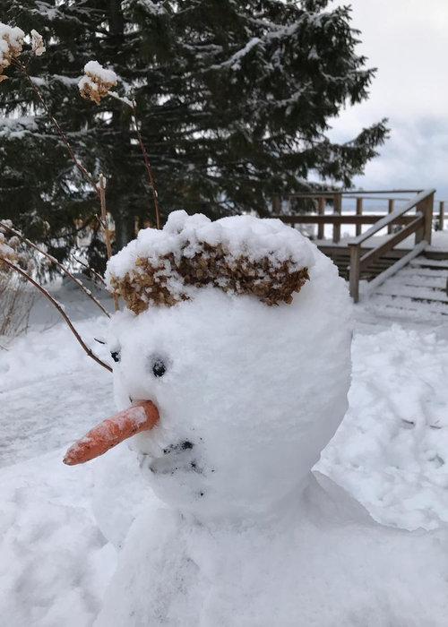 лучший-снеговик-+слепленный-детьми-в-загородном-отеле-на-озере.jpg