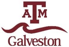 A&M Galveston