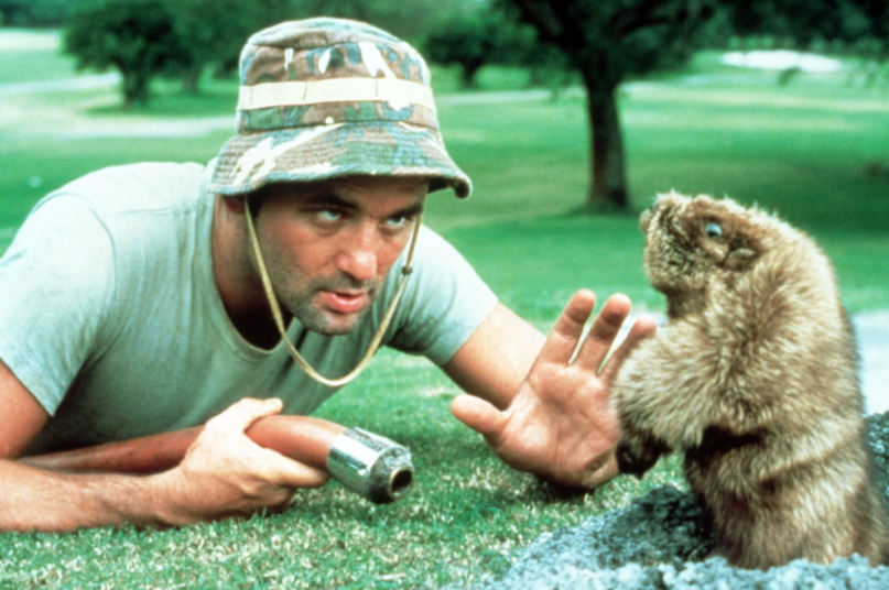 bill-murray-caddyshack-bar-chicago.png