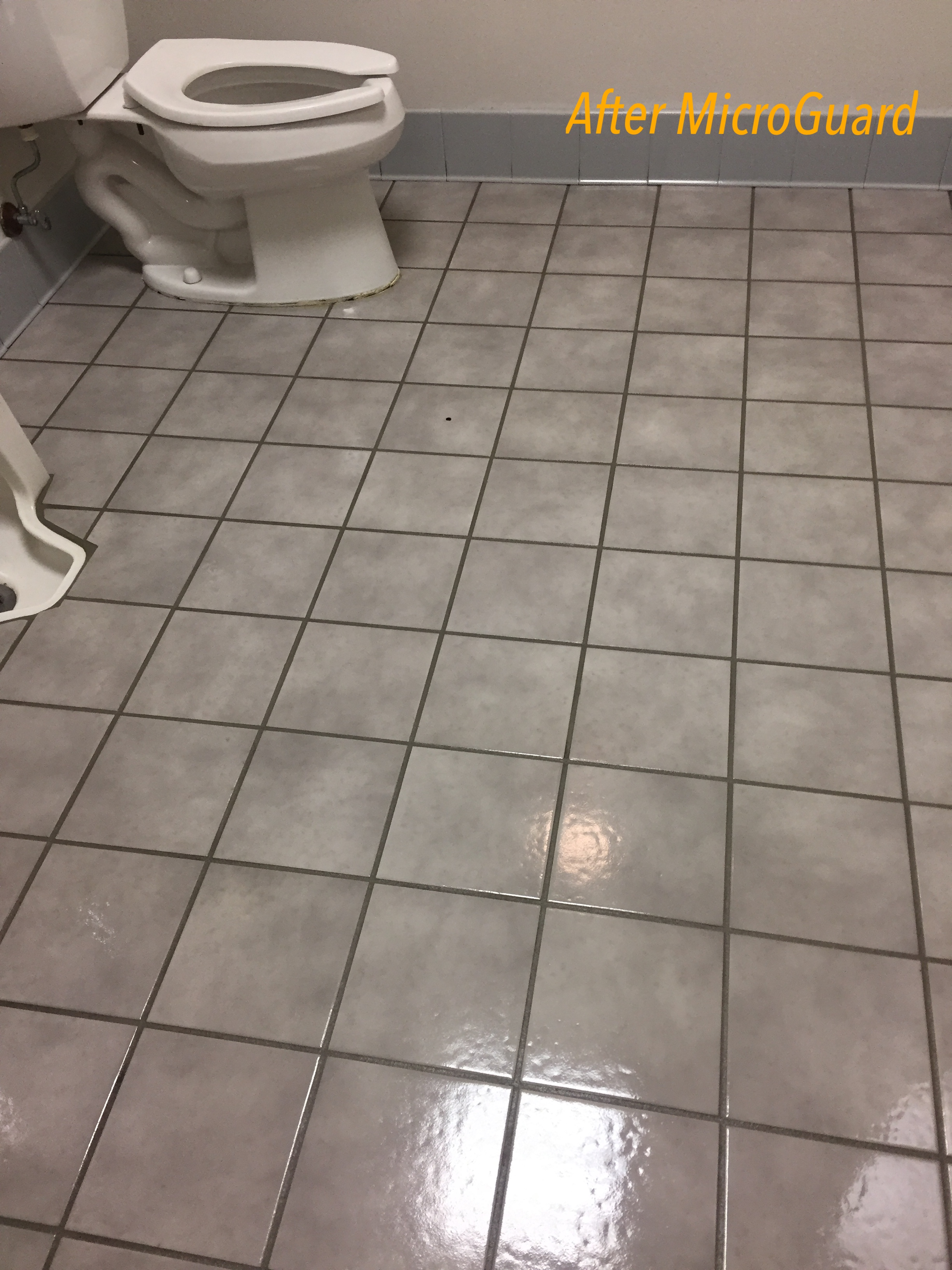 3 Commercial restroom coated with Microguard.JPG