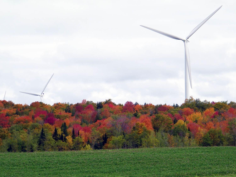 new york renewable energy
