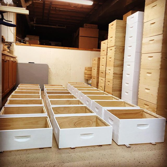 And painted! 🐝  The hive boxes we use and provide are all hand-rolled and double coated. It's the best defense against the variety of elements they are exposed to. 🐝  More info about our woodenwares on our website. Link in bio. 🐝  #chicagoland #localhoney #honeybees #hivecomponents #woodenware #honeytrails #beehives