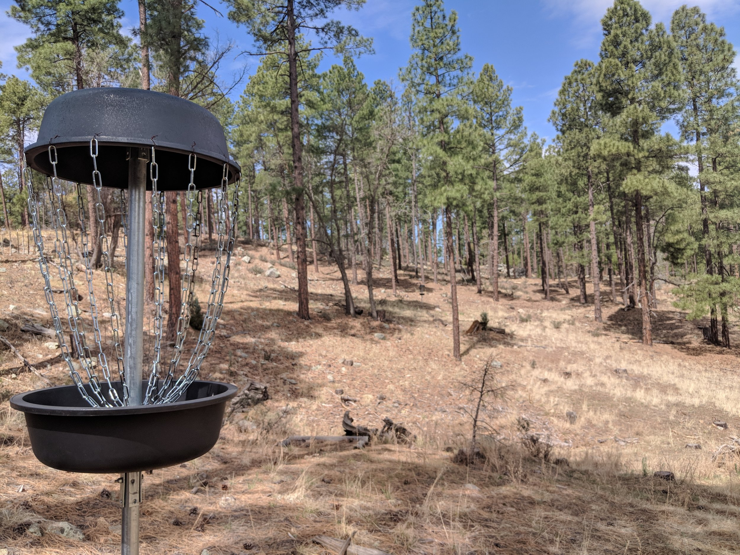 Disc Golf Course