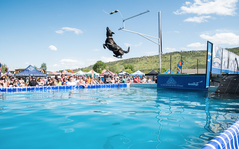 Dock Dogs - BARK. JUMP. SPLASHThe country's top aquatic dog competition will feature Big Air, Speed Retrieve, and Extreme Vertical events on Friday and Saturday. Registration is open to all dogs.