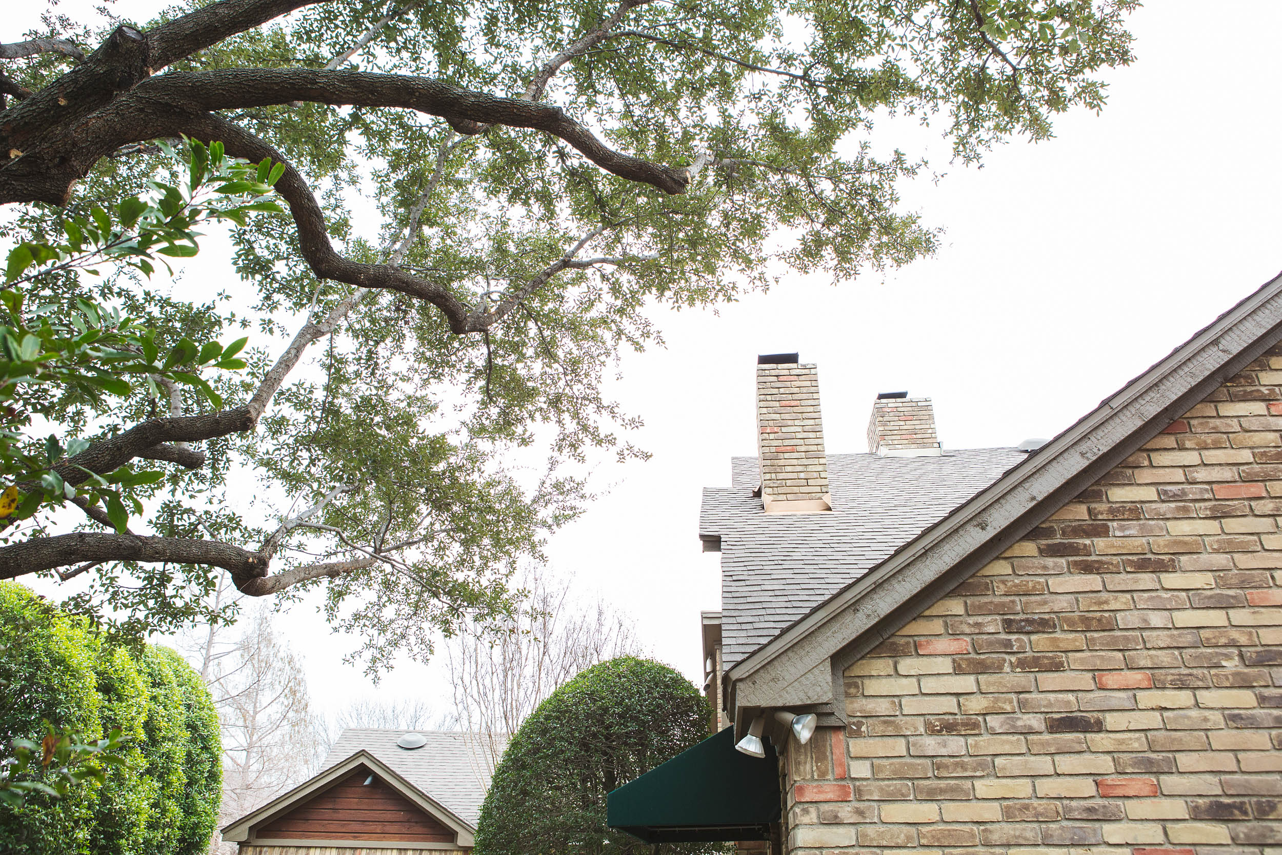 Tree Trimming in Southlake Texas (6 of 8).jpg