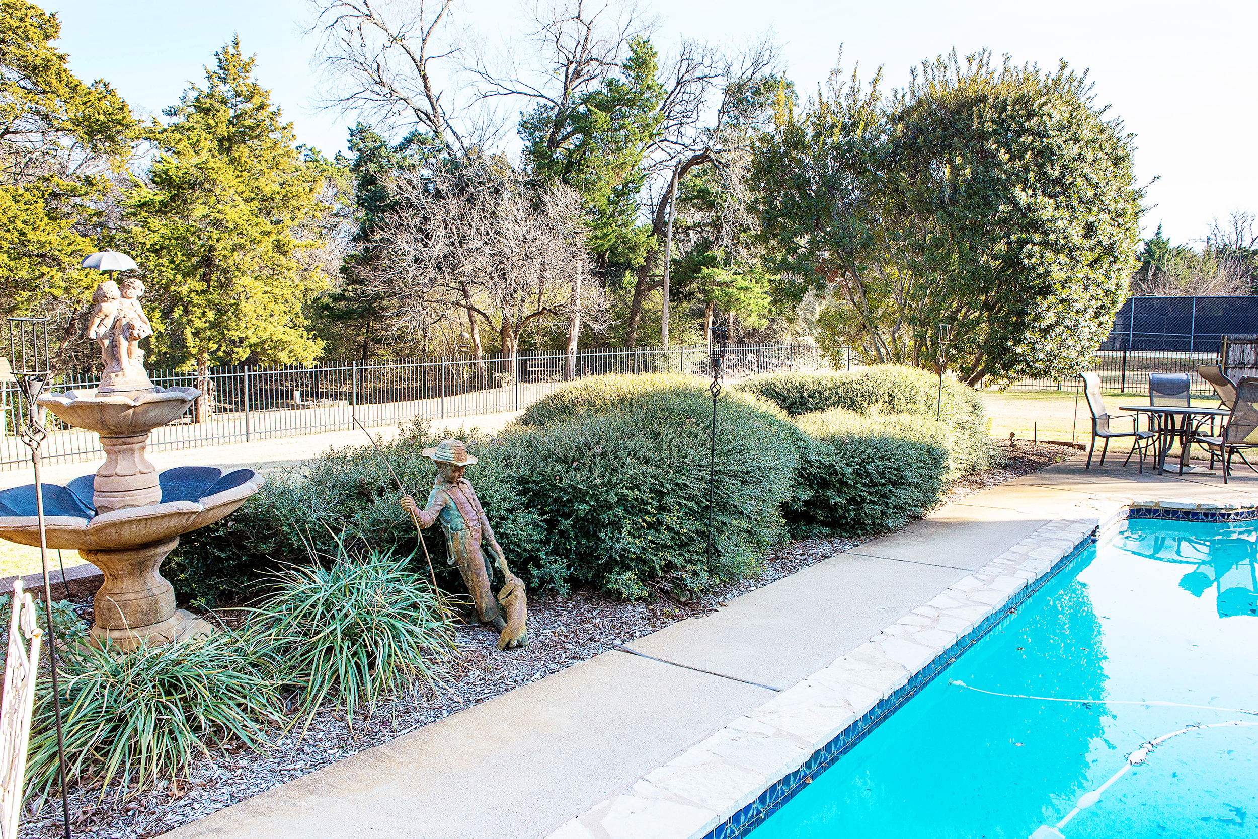 Tree Trimming in Keller Texas.jpg